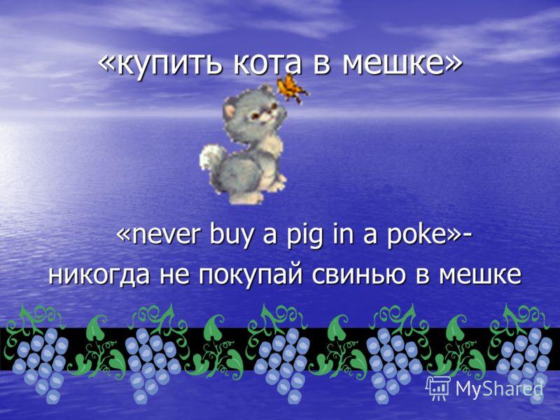 «купить кота в мешке» «never buy a pig in a poke»- никогда не покупай свинью в мешке никогда не покупай свинью в мешке