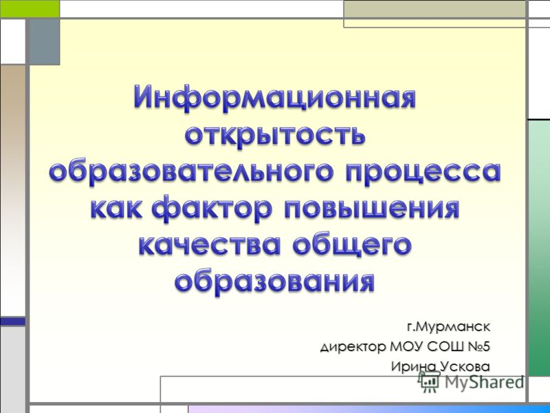 г.Мурманск директор МОУ СОШ 5 директор МОУ СОШ 5 Ирина Ускова