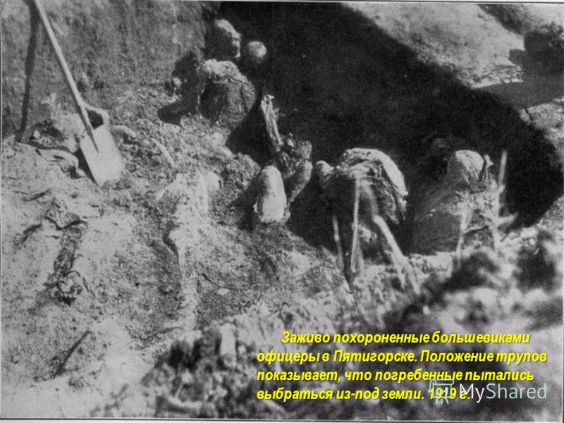 Заживо похороненные большевиками офицеры в Пятигорске. Положение трупов показывает, что погребенные пытались выбраться из-под земли. 1919 г. Заживо похороненные большевиками офицеры в Пятигорске. Положение трупов показывает, что погребенные пытались