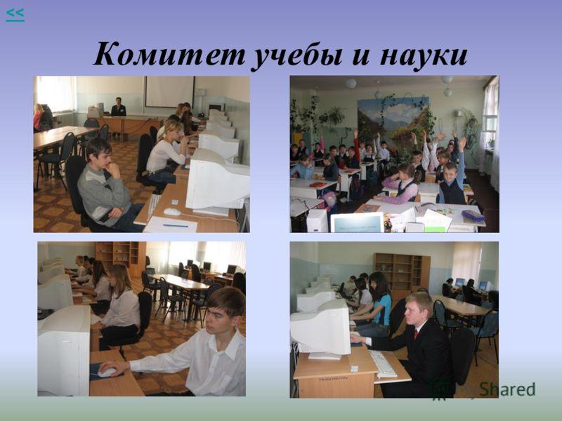 Комитет учебы и науки