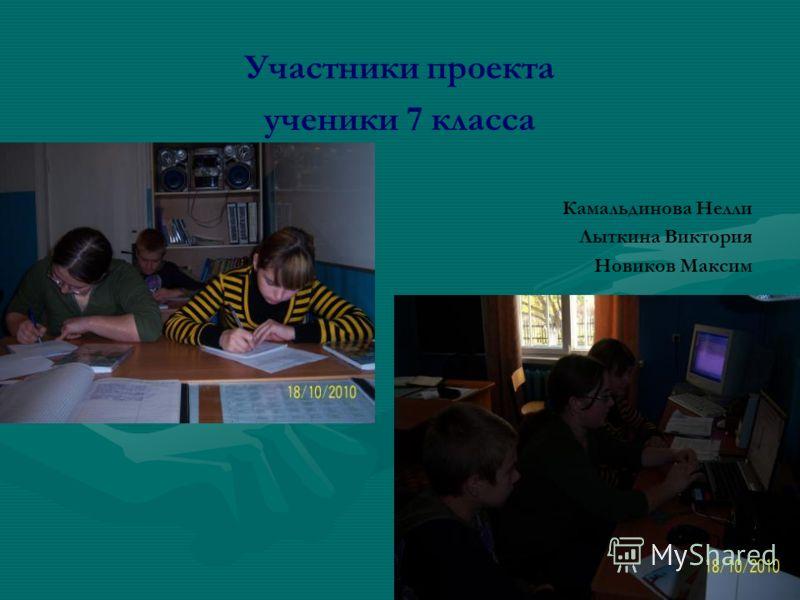 Участники проекта ученики 7 класса Камальдинова Нелли Лыткина Виктория Новиков Максим