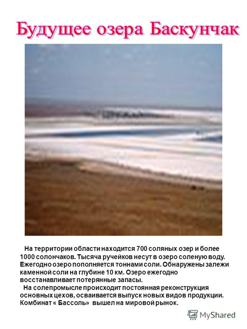 На территории области находится 700 соляных озер и более 1000 солончаков. Тысяча ручейков несут в озеро соленую воду. Ежегодно озеро пополняется тоннами соли. Обнаружены залежи каменной соли на глубине 10 км. Озеро ежегодно восстанавливает потерянные