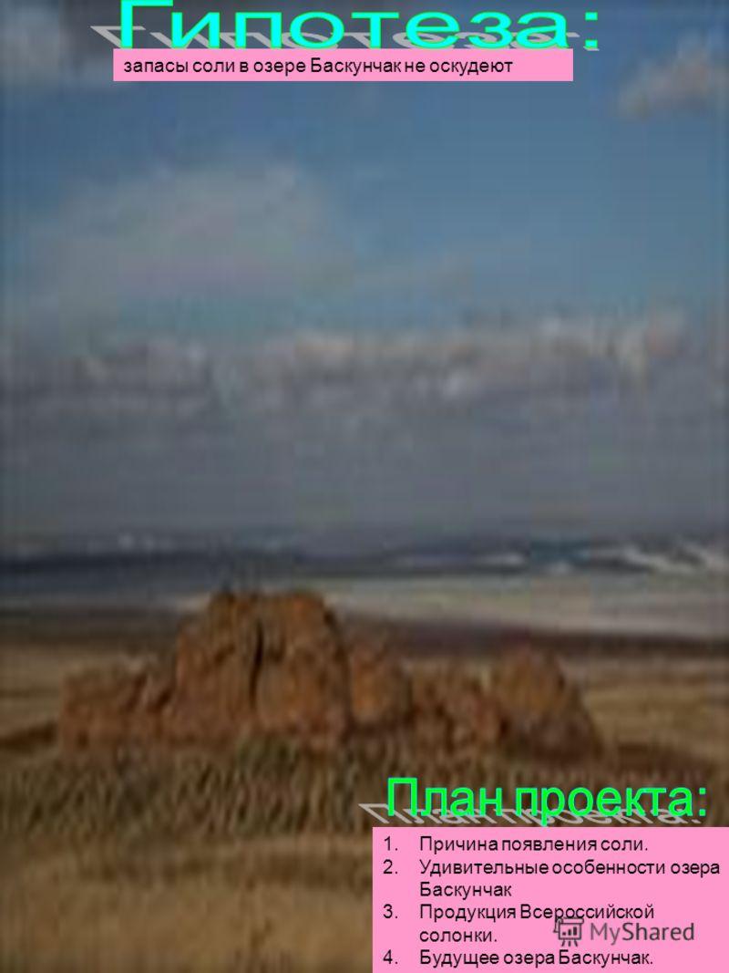запасы соли в озере Баскунчак не оскудеют 1.Причина появления соли. 2.Удивительные особенности озера Баскунчак 3.Продукция Всероссийской солонки. 4.Будущее озера Баскунчак.
