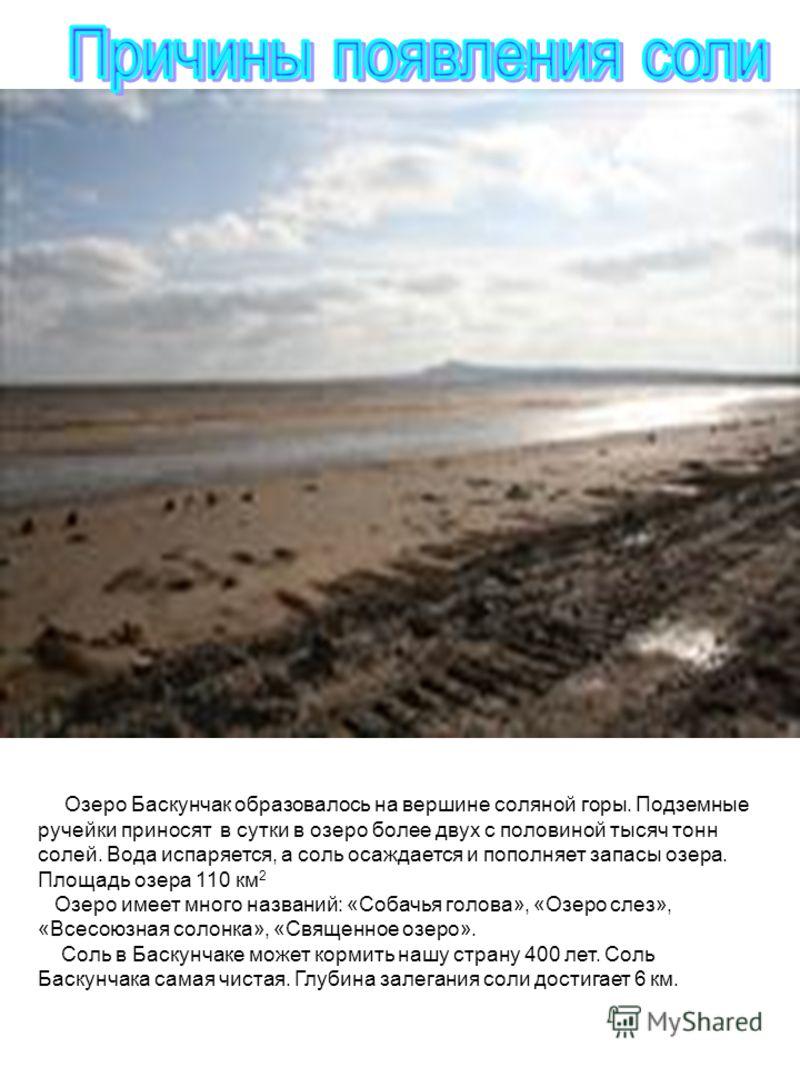 Озеро Баскунчак образовалось на вершине соляной горы. Подземные ручейки приносят в сутки в озеро более двух с половиной тысяч тонн солей. Вода испаряется, а соль осаждается и пополняет запасы озера. Площадь озера 110 км 2 Озеро имеет много названий: