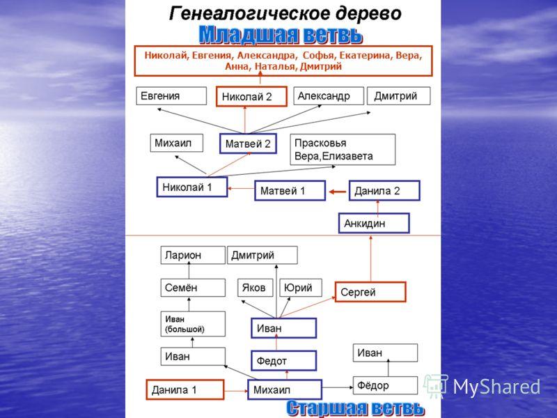Николай, Евгения, Александра, Софья, Екатерина, Вера, Анна, Наталья, Дмитрий