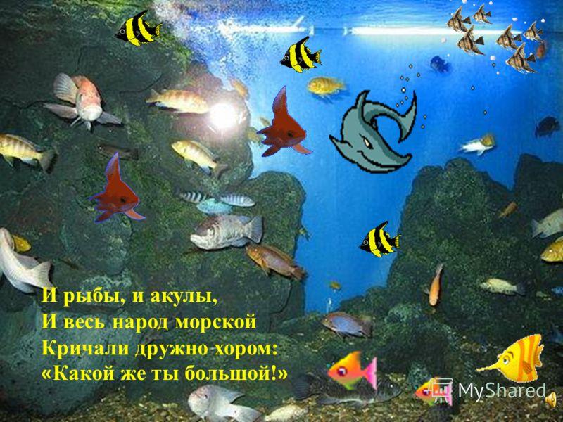 И рыбы, и акулы, И весь народ морской Кричали дружно хором: « Какой же ты большой! »
