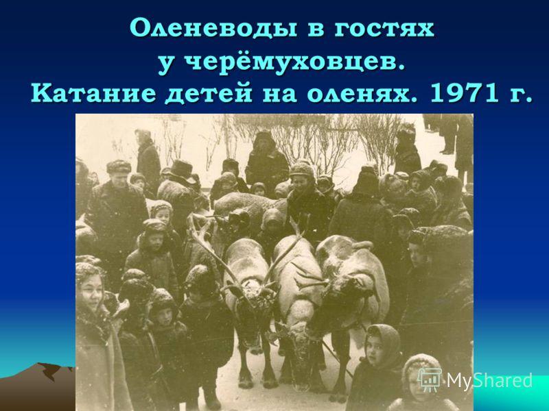 Оленеводы в гостях у черёмуховцев. Катание детей на оленях. 1971 г.