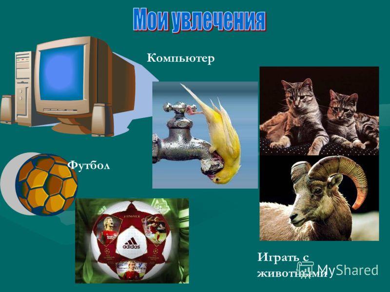 Компьютер Играть с животными Футбол
