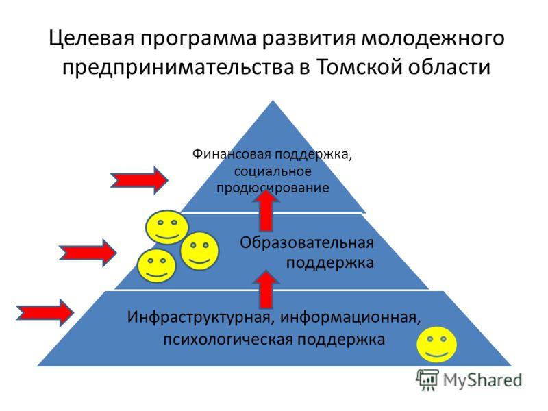 Целевая программа развития молодежного предпринимательства в Томской области Финансовая поддержка, социальное продюсирование Образовательная поддержка Инфраструктурная, информационная, психологическая поддержка
