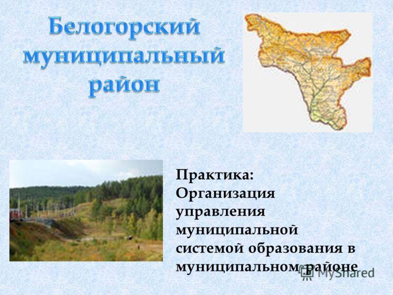 Практика: Организация управления муниципальной системой образования в муниципальном районе