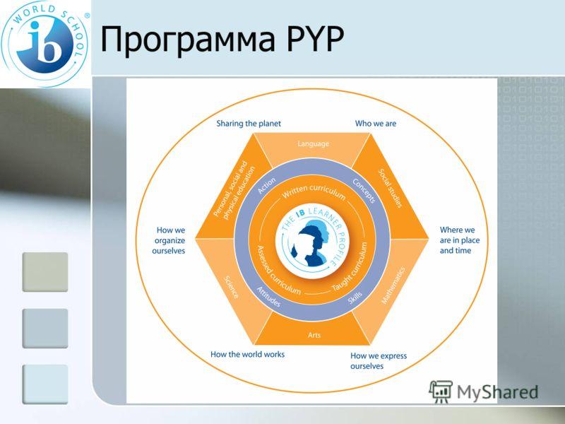 Программа РYP