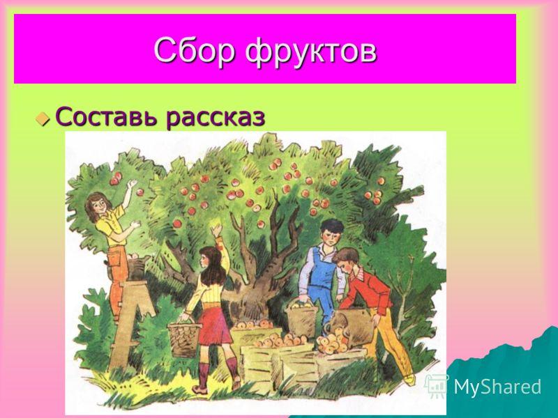 Сбор фруктов Составь рассказ Составь рассказ