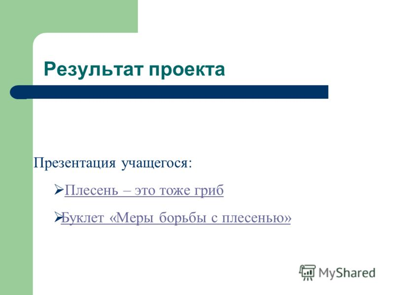 Результат проекта Презентация учащегося: Плесень – это тоже гриб Буклет «Меры борьбы с плесенью»