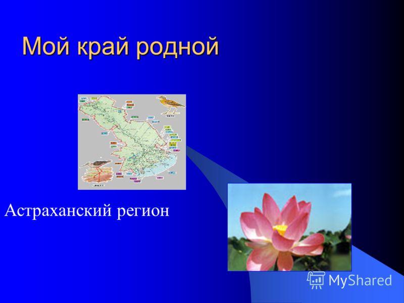 Краткая история Астраханского края История Лиманского района Структура проекта