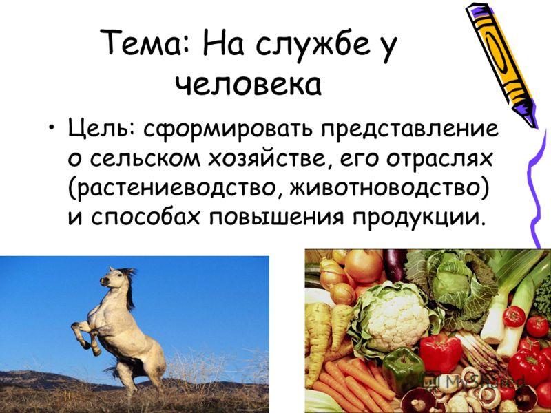 Тема: На службе у человека Цель: сформировать представление о сельском хозяйстве, его отраслях (растениеводство, животноводство) и способах повышения продукции.