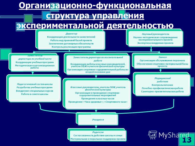 Организационно-функциональная структура управления экспериментальной деятельностью 13 Директор Координация деятельности заместителей Работа над правовой базой проекта Заключение договорных обязательств Контроль реализации программы Заместитель директ