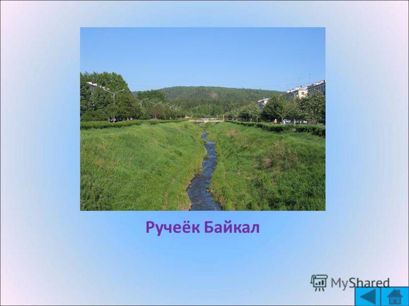 Ручеёк Байкал
