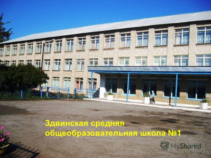 Здвинская средняя общеобразовательная школа 1