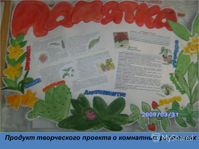Продукт творческого проекта о комнатных растениях