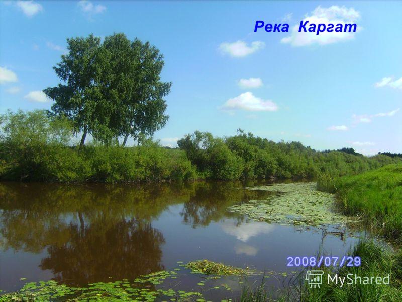 Река Каргат