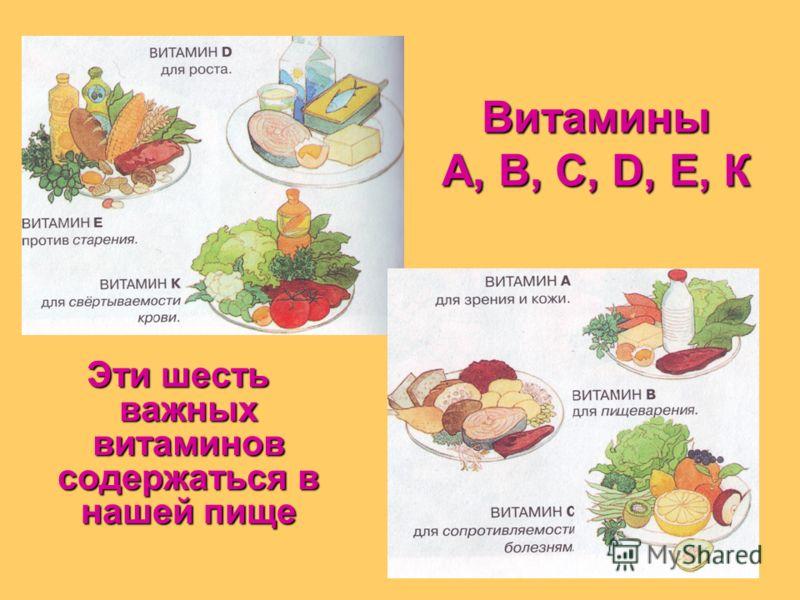 наша пища и витамины картинки