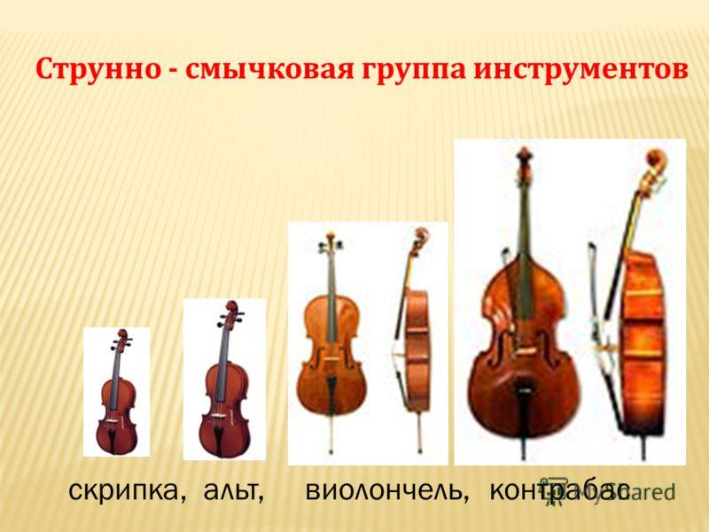 Струнно - смычковая группа инструментов скрипка, альт, виолончель,контрабас