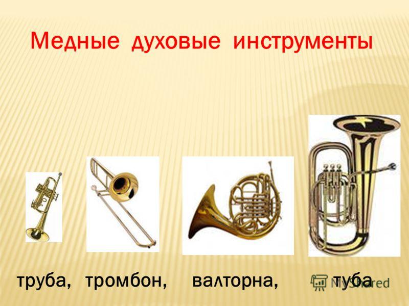 труба, тромбон, валторна, туба Медные духовые инструменты