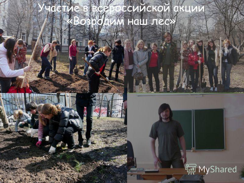 Участие в всероссийской акции «Возродим наш лес»