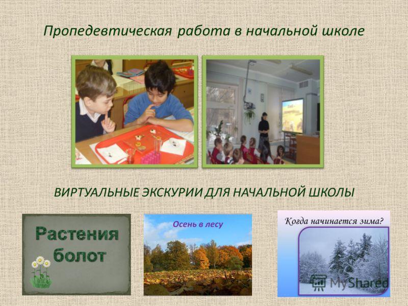 Пропедевтическая работа в начальной школе ВИРТУАЛЬНЫЕ ЭКСКУРИИ ДЛЯ НАЧАЛЬНОЙ ШКОЛЫ