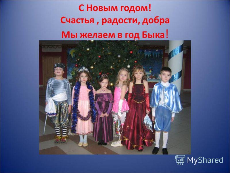 С Новым годом! Счастья, радости, добра Мы желаем в год Быка !