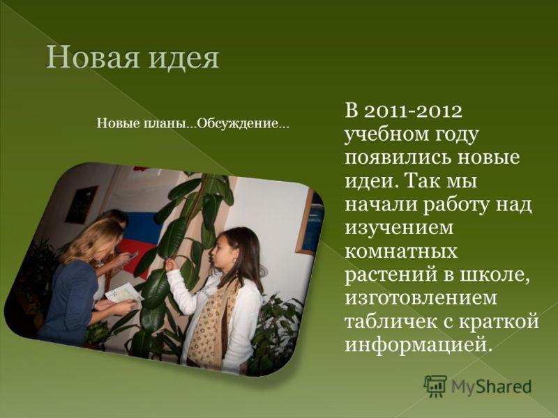 Новые планы…Обсуждение… В 2011-2012 учебном году появились новые идеи. Так мы начали работу над изучением комнатных растений в школе, изготовлением табличек с краткой информацией.