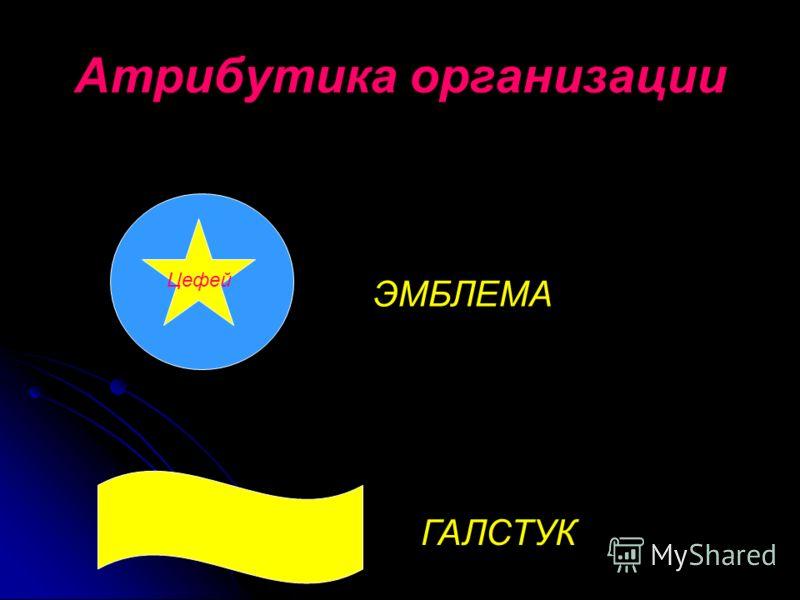 Атрибутика организации Цефей ЭМБЛЕМА ГАЛСТУК