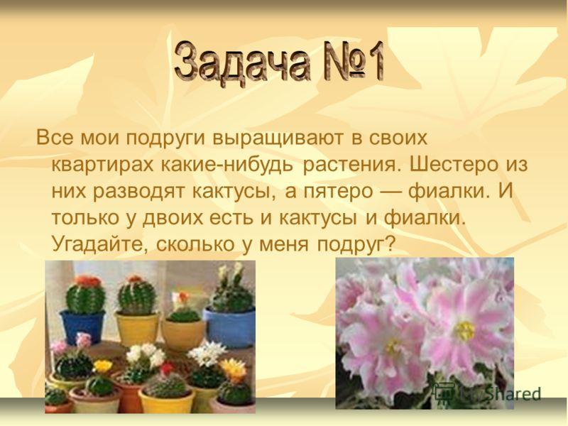 Все мои подруги выращивают в своих квартирах какие-нибудь растения. Шестеро из них разводят кактусы, а пятеро фиалки. И только у двоих есть и кактусы и фиалки. Угадайте, сколько у меня подруг?