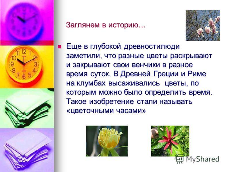 Заглянем в историю… Еще в глубокой древностилюди заметили, что разные цветы раскрывают и закрывают свои венчики в разное время суток. В Древней Греции и Риме на клумбах высаживались цветы, по которым можно было определить время. Такое изобретение ста