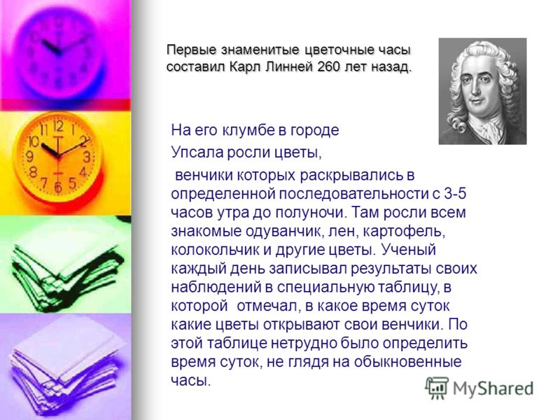 Первые знаменитые цветочные часы составил Карл Линней 260 лет назад. На его клумбе в городе Упсала росли цветы, венчики которых раскрывались в определенной последовательности с 3-5 часов утра до полуночи. Там росли всем знакомые одуванчик, лен, карто