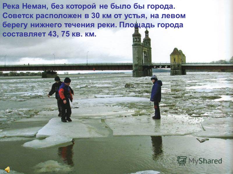 Река Неман, без которой не было бы города. Советск расположен в 30 км от устья, на левом берегу нижнего течения реки. Площадь города составляет 43, 75 кв. км.