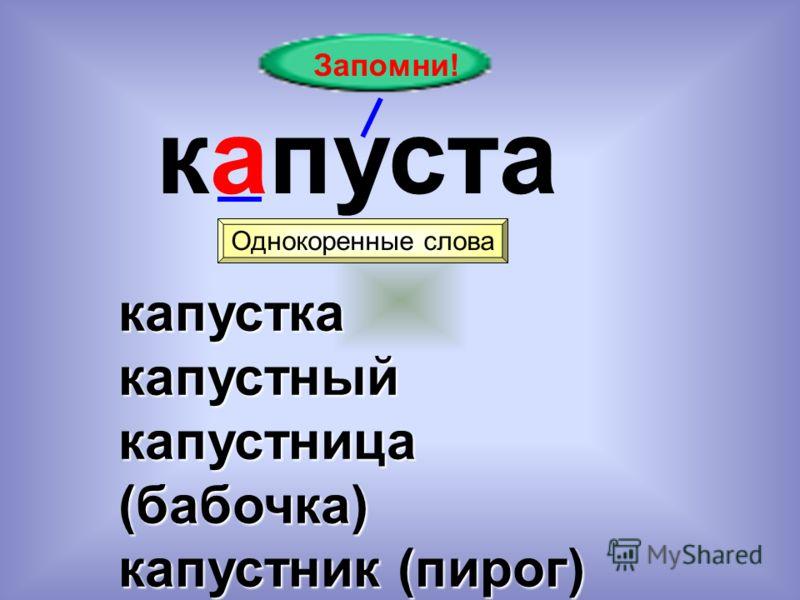Запомни! капуста Однокоренные слова капусткакапустный капустница (бабочка) капустник (пирог)