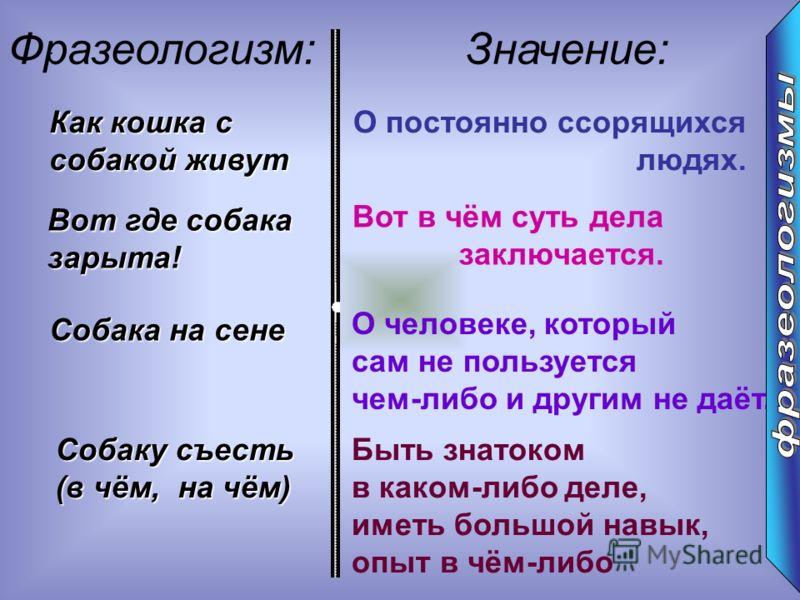 : Фразеологизм:Значение: Как кошка с собакой живут О постоянно ссорящихся людях. Вот где собака зарыта! Вот в чём суть дела заключается. Собака на сене О человеке, который сам не пользуется чем-либо и другим не даёт. Собаку съесть (в чём, на чём) Быт