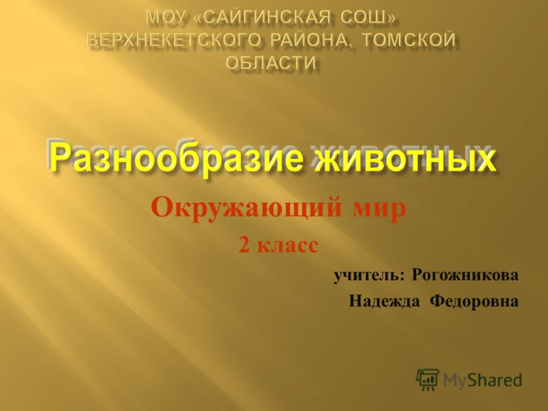 Окружающий мир 2 класс учитель : Рогожникова Надежда Федоровна