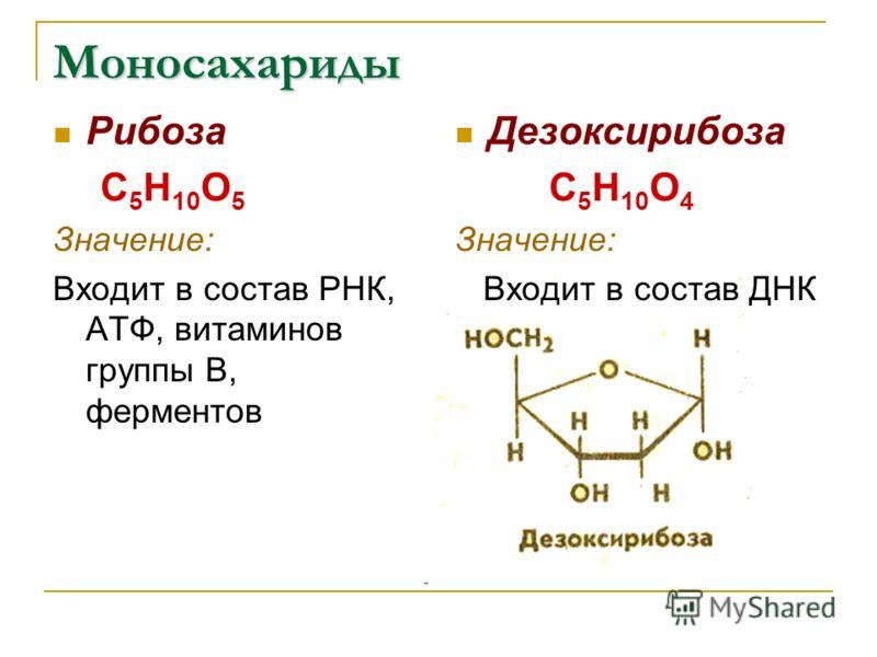 Моносахариды Рибоза С 5 Н 10 О 5 Значение: Входит в состав РНК, АТФ, витаминов группы В, ферментов Дезоксирибоза С 5 Н 10 О 4 Значение: Входит в состав ДНК