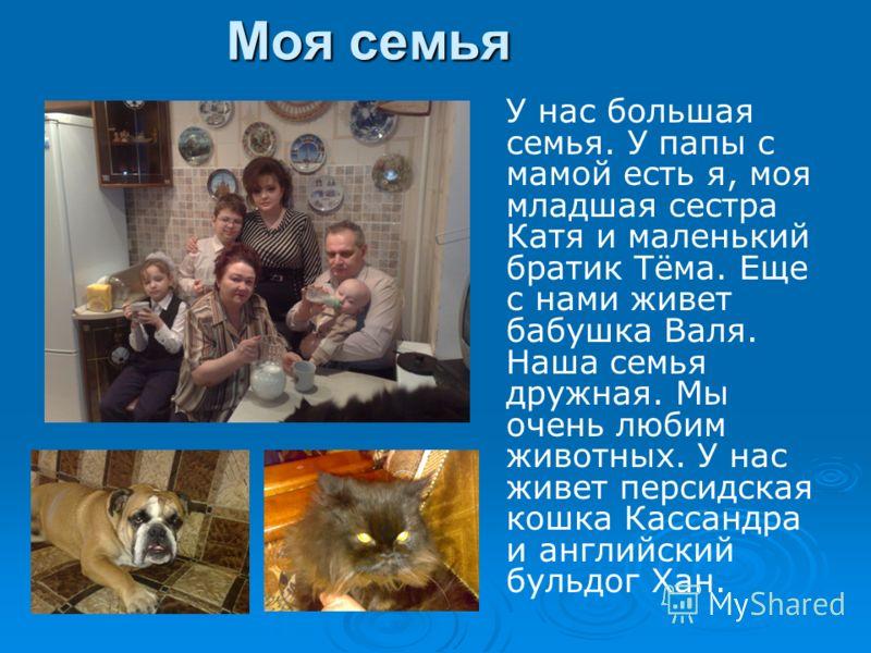 Моя семья У нас большая семья. У папы с мамой есть я, моя младшая сестра Катя и маленький братик Тёма. Еще с нами живет бабушка Валя. Наша семья дружная. Мы очень любим животных. У нас живет персидская кошка Кассандра и английский бульдог Хан.