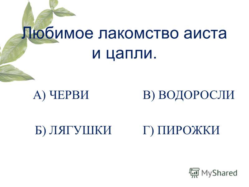 Любимое лакомство аиста и цапли. А) ЧЕРВИ Б) ЛЯГУШКИ В) ВОДОРОСЛИ Г) ПИРОЖКИ