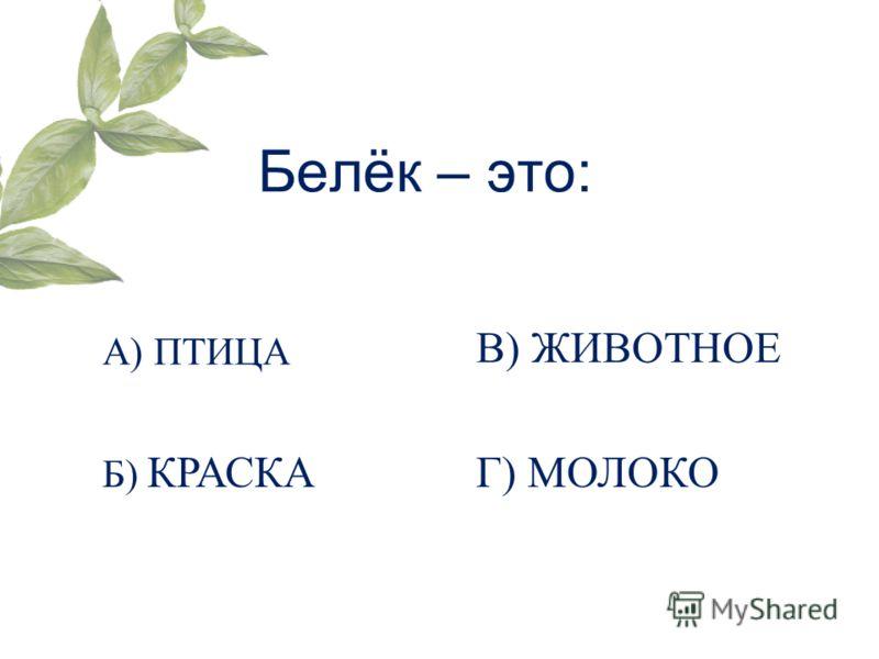 Белёк – это: А) ПТИЦА Б) КРАСКА В) ЖИВОТНОЕ Г) МОЛОКО