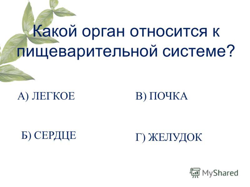 Какой орган относится к пищеварительной системе? А) ЛЕГКОЕ Б) СЕРДЦЕ В) ПОЧКА Г) ЖЕЛУДОК