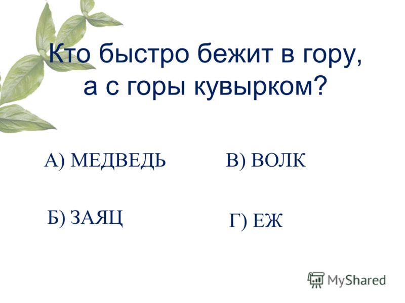 Кто быстро бежит в гору, а с горы кувырком? А) МЕДВЕДЬ Б) ЗАЯЦ В) ВОЛК Г) ЕЖ