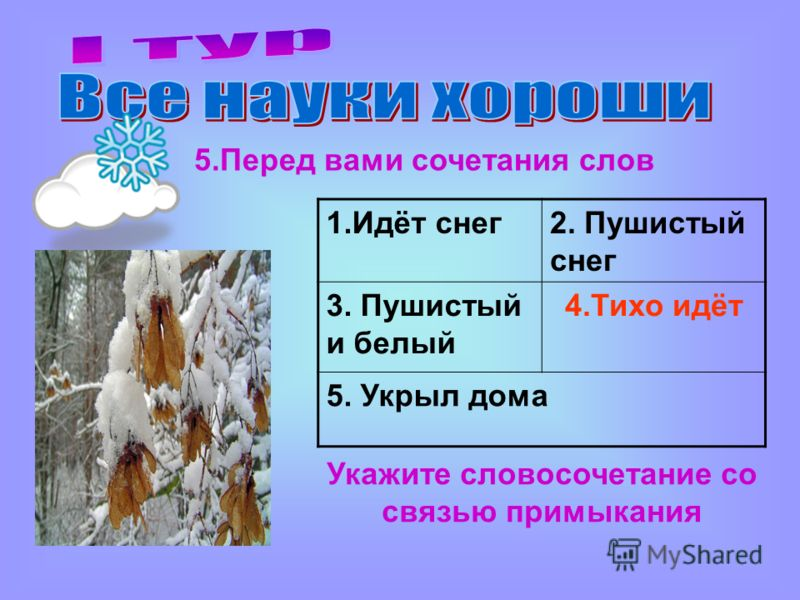 Укажите словосочетание со связью примыкания 5.Перед вами сочетания слов 1.Идёт снег2. Пушистый снег 3. Пушистый и белый 4.Тихо идёт 5. Укрыл дома