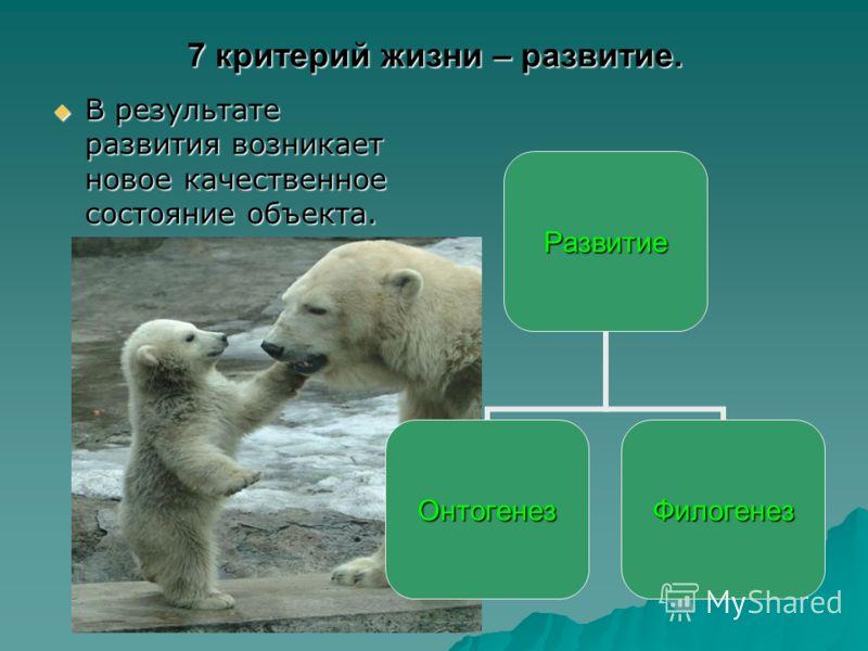 7 критерий жизни – развитие. В результате развития возникает новое качественное состояние объекта. В результате развития возникает новое качественное состояние объекта.Развитие ОнтогенезФилогенез