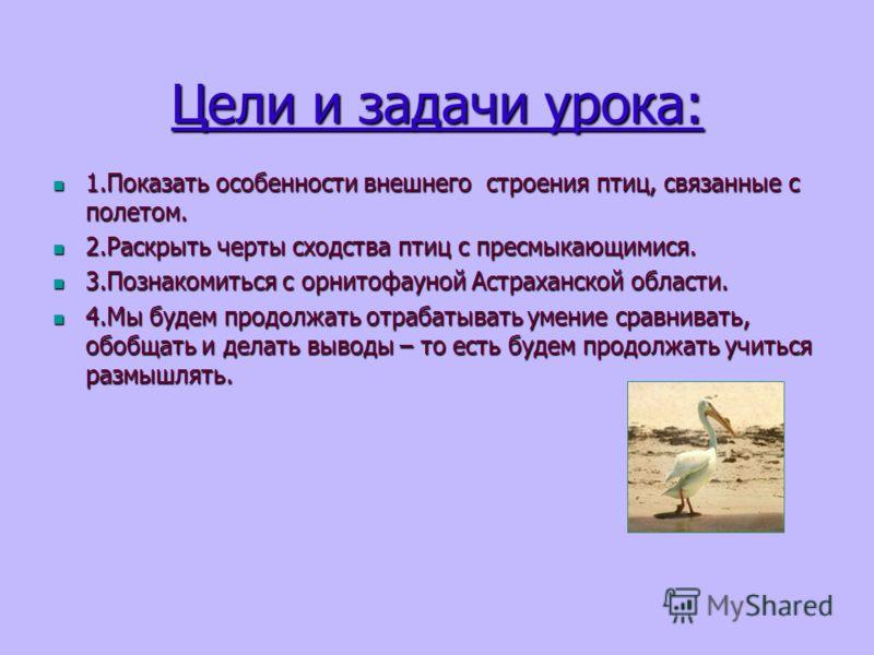 Цели и задачи урока: 1.Показать особенности внешнего строения птиц, связанные с полетом. 1.Показать особенности внешнего строения птиц, связанные с полетом. 2.Раскрыть черты сходства птиц с пресмыкающимися. 2.Раскрыть черты сходства птиц с пресмыкающ