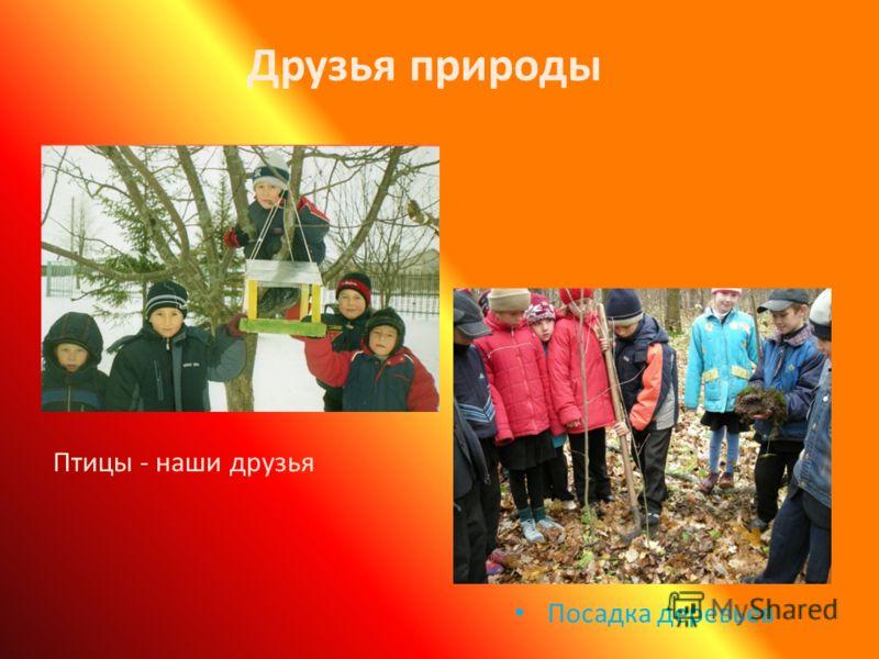 Друзья природы Посадка деревьев Птицы - наши друзья