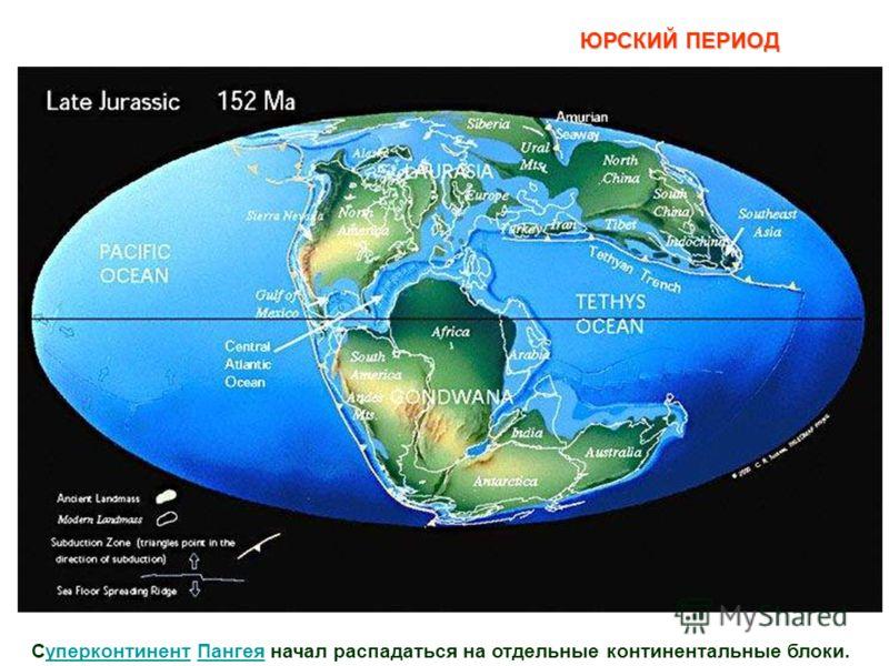 Суперконтинент Пангея начал распадаться на отдельные континентальные блоки.уперконтинентПангея ЮРСКИЙ ПЕРИОД